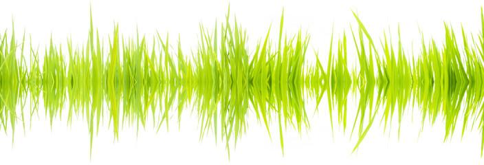 Sound waves 003