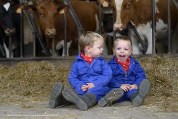 Tweeling op de boerderij