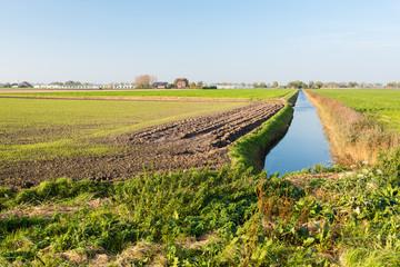 Colorful Dutch rural landscape in autumn