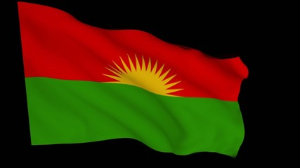 Flag animation with alpha - Party of Free Life of Kurdistan