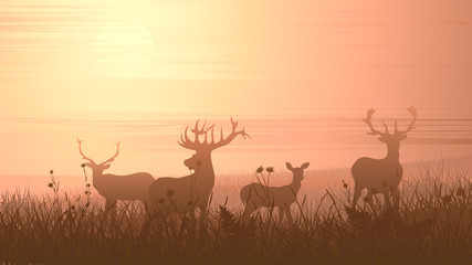 Horizontal illustration of wild animals on meadow.
