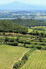 Provence landscape, South of France
