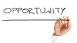 Writing Opportunity on virtual whiteboard