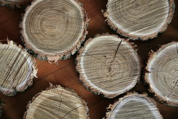 Sezioni di tronco