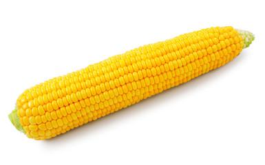 Fresh raw corn on white background. isolated