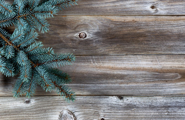 Christmas Tree on rustic wood