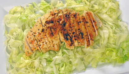 Grilled Chicken Breast On Bed Of Iceberg Lettuce