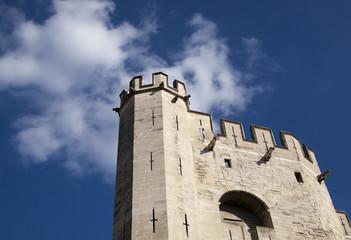 Castle in Avigon