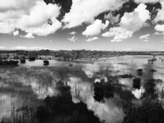 Clouds over the swamp