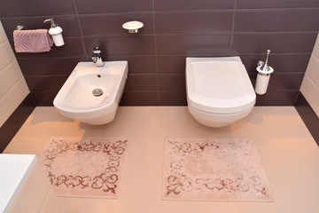 Bathroom interior with the sanitary equipment