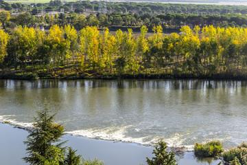 Rivera río