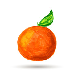Watercolor painting, orange on white background. Vector illustra
