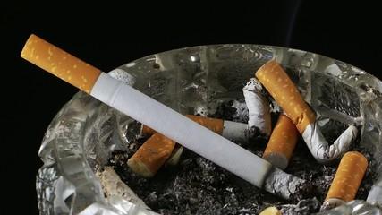 Cigarette in Ashtray Time Lapse