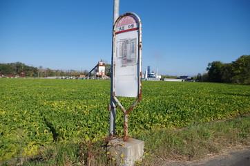 北海道の畑とバス停