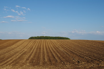 傾斜のある畑
