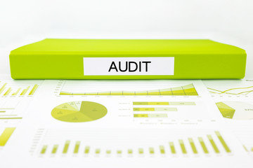 Audit reports, graphs, charts, data analysis and evaluation docu