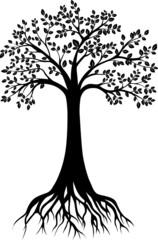 tree sillhouete  vector