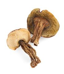 dried mushrooms on white