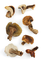 dried mushrooms on white