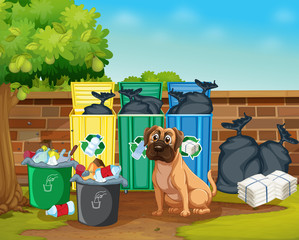 Dog and trashcans