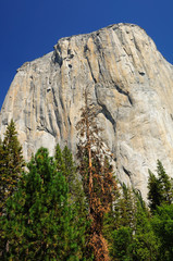 Rock mountain in Yosemite national park. California. USA.
