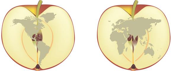 due mezze mele