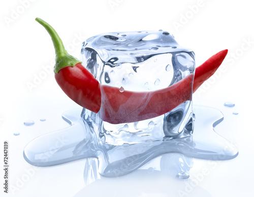 Leinwanddruck Bild Eiswürfel mit Chili