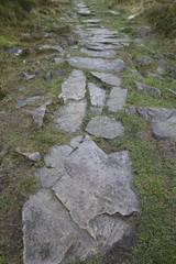 Der Weg ist das Ziel - Steinweg