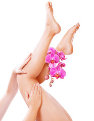 Beautiful legs with pink orchid