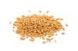 Wheat. - 72451273