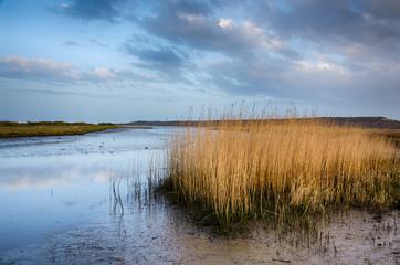 Stanpit Marsh
