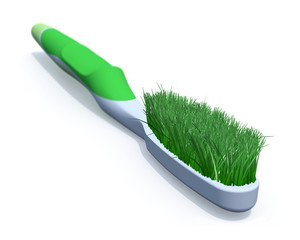 toothbrush with grass instead of a brush
