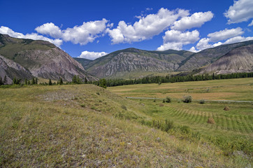 Haymaking in the mountains. Altai, Russia.