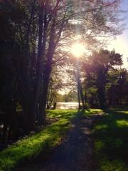 Beautiful sunlight over lake