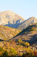 Parco nazionale d' Abruzzo Lazio e Molise