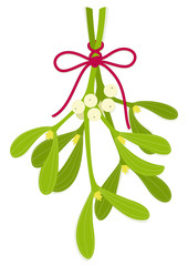 Mistletoe bouquet with bow of red rope
