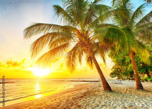 Plexiglas Zonsondergang Barbados
