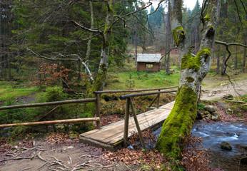 Small  bridge over the river