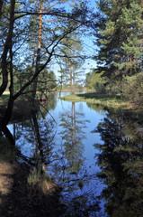 Quiet river backwater