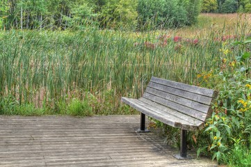 Cedar bench on boardwalk