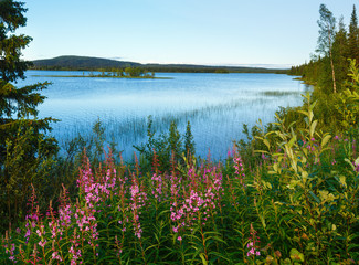 Lake summer view (Sweden).