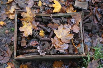 Kiste mit Schrauben unter Herbstlaub