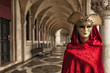 Beautiful Woman in Mysterious Mask