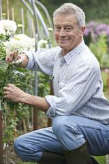 Senior Man Cultivating Flowers In Garden