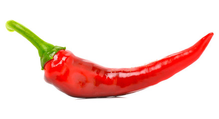 Chili red pepper
