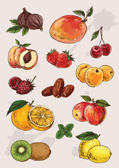 collection of  hand drawing isolated  fruits