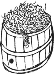 doodle wooden barrel with grapes