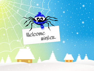 Spider at Christmas
