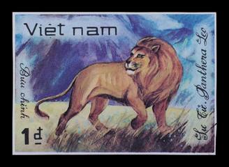 Post stamp. Animals, lion