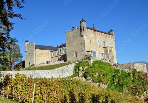 Papiers peints Alpes château de bourdeau -savoie